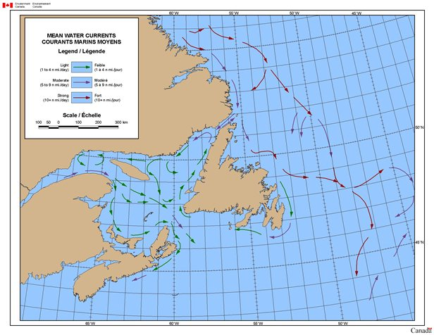 Map of Surface Currents on East Coast of Canada
